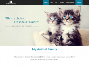 blog-animal-family
