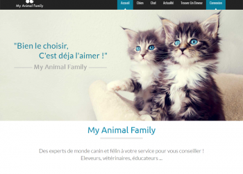 Blog Animal Family